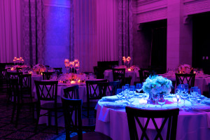 Blue Spotlight on Table with Flowers, Pink & Purple Lighting in Background