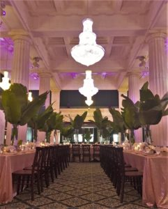 Central View Between Two Long Tables, Green Leaves