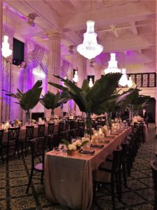 Purple Backlit Green Plants with Long Wedding Tables